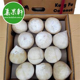 进口水果批发货源供应泰国功夫牌椰皇Kung Fu