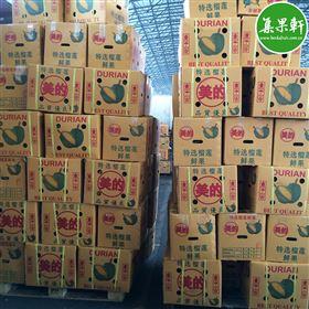 进口水果泰国榴莲美的特选榴莲批发货源