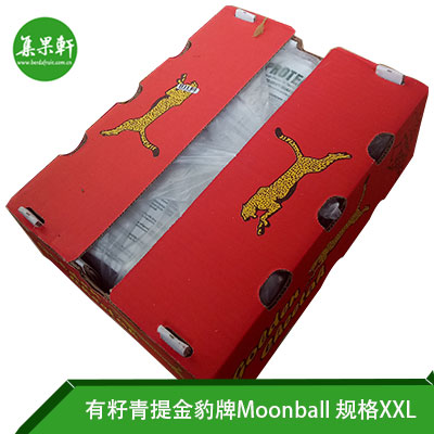 南非金豹有籽青提MOONBALL规格XL