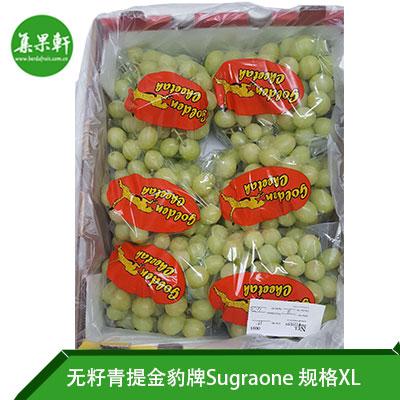 南非进口无籽青提Sugraone品种 | 金豹牌4.5公斤XL规格