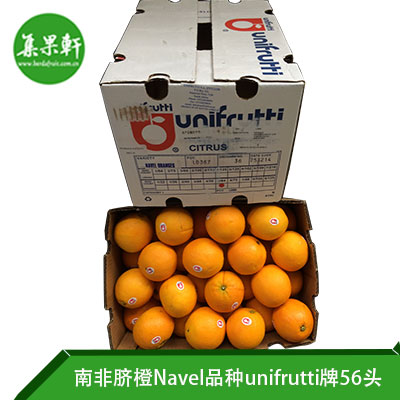 南非进口脐橙Navel品种 | unifrutti牌15公斤72头规格