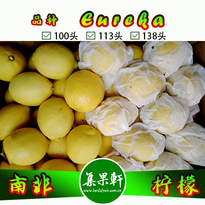南非进口尤力克柠檬Eureka品种/ ALLIANCE FRUIT三叉路柠檬15公斤