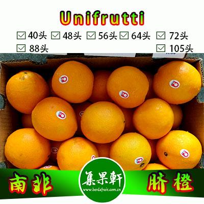 南非进口脐橙Navel品种 | unifrutti牌15公斤