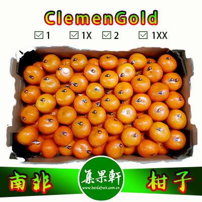 南非进口ClemenGold柑橘