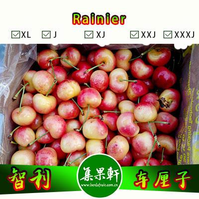 智利进口金车厘子Rainier品种   Clee牌2.5公斤SJ规格
