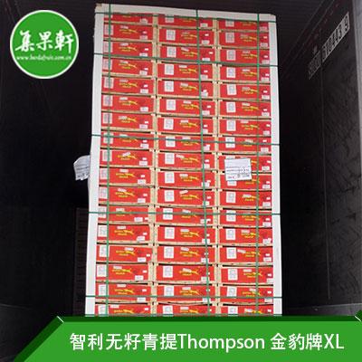 智利进口无籽青提Thompson | 金豹牌XL规格