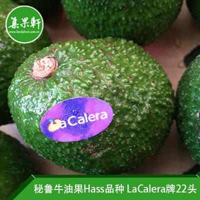 秘鲁进口牛油果Hass品种 | LaCalera牌4公斤22头规格