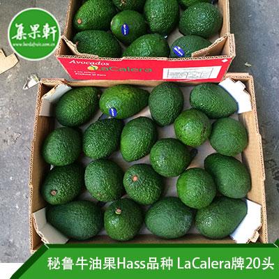 秘鲁进口牛油果Hass品种 | LaCalera牌4公斤20头规格