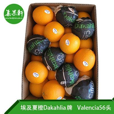 埃及夏橙Dakahlia牌Valencia品种56头15kg规格