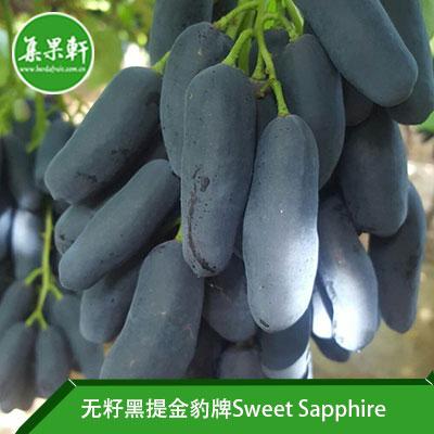 南非进口无籽黑提美人指批发Sweet Sapphire品种 | 金豹牌4.5公斤XL规格