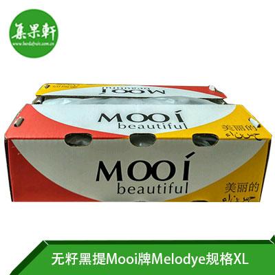 南非进口无籽黑提Melody品种 | Mooi牌4.5公斤XL规格