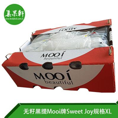 南非无籽黑提Sweet Joy品种Mooi牌XL