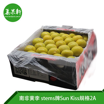 南非进口黄李Sun Kiss品种 | stems牌5公斤2A规格