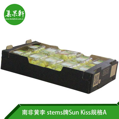 南非进口黄李Sun Kiss品种 | stems牌5公斤A规格