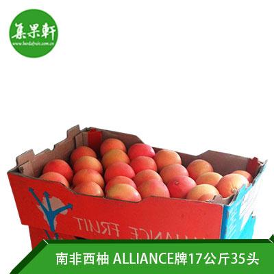 南非进口红宝石西柚Star Ruby品种 | ALLIANCE牌17公斤35头规格