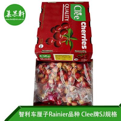 智利进口金车厘子Rainier品种 | Clee牌2.5公斤SJ规格