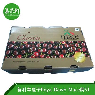 智利进口车厘子Royal Dawn品种 | Mace牌2.5公斤SJ规格