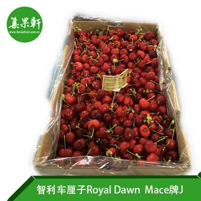 智利进口车厘子Royal Dawn品种 | Mace牌5公斤J规格