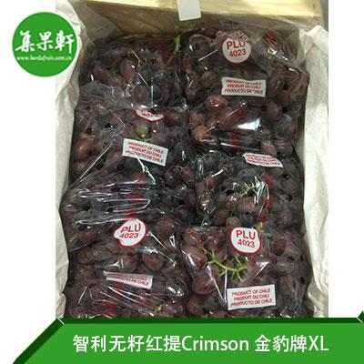 智利进口无籽红提Crimson品种 | 金豹牌4.5公斤XL规格