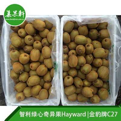 智利进口绿心奇异果Hayward品种 | 金豹牌10公斤C27规格
