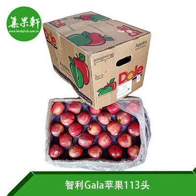 智利Gala苹果113头