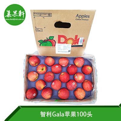 智利Gala苹果100头