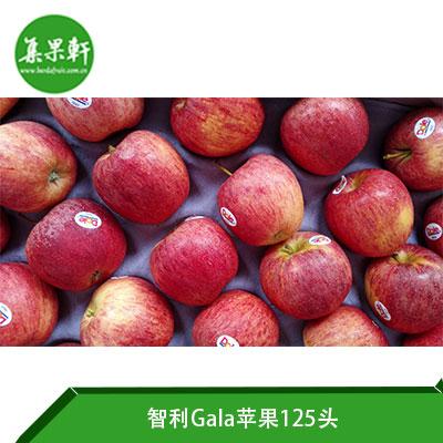 智利Gala苹果125头