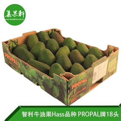 智利进口牛油果Hass品种 | PROPAL牌4公斤18头规格