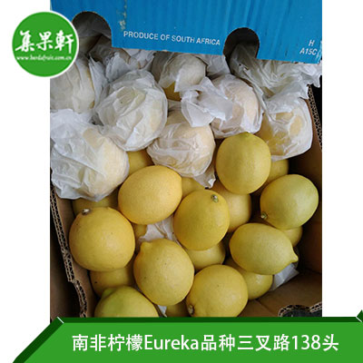 南非进口尤力克柠檬Eureka品种/ ALLIANCE FRUIT三叉路柠檬15公斤138头