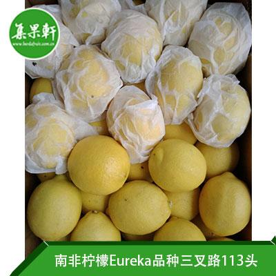 南非进口尤力克柠檬Eureka品种/ ALLIANCE FRUIT三叉路柠檬15公斤113头