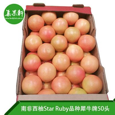 南非进口红宝石西柚Star Ruby品种 | Naba犀牛牌17公斤50头