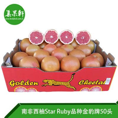 南非进口红宝石西柚Star Ruby品种 | 金豹牌17公斤50头
