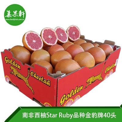 南非进口红宝石西柚Star Ruby品种 | 金豹牌17公斤40头