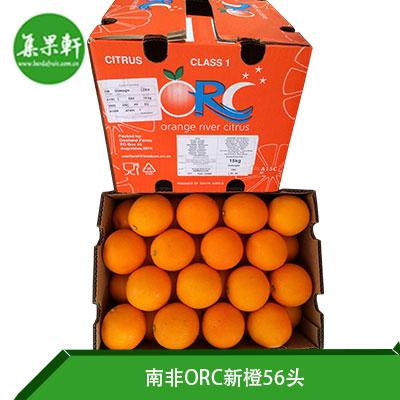 南非ORC新橙56头
