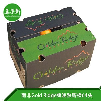 南非Gold Ridge牌进口晚熟脐橙64头