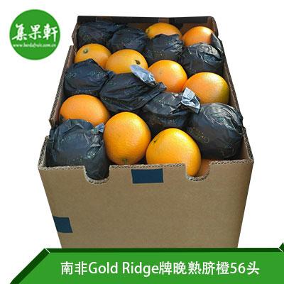 南非Gold Ridge牌进口晚熟脐橙56头