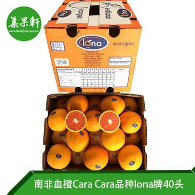南非进口血橙Cara Cara品种 | lona牌15公斤40头规格