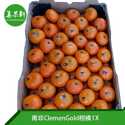 南非进口ClemenGold柑橘规格1X