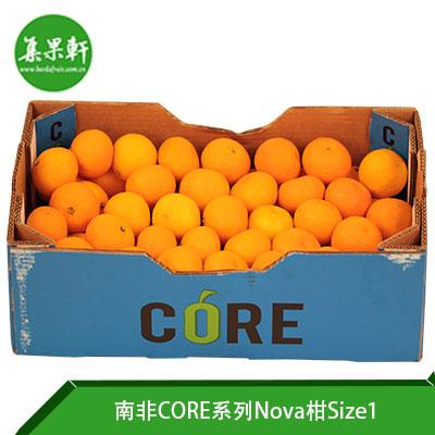 南非CORE系列Nova柑Size1