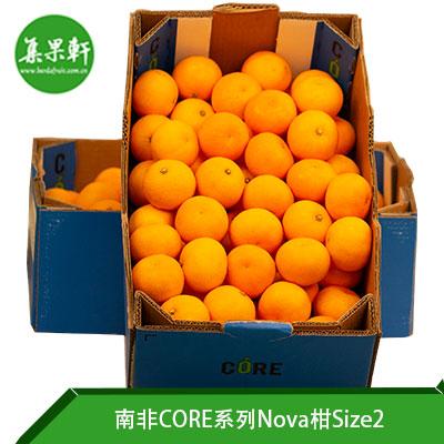 南非CORE系列Nova柑Size2