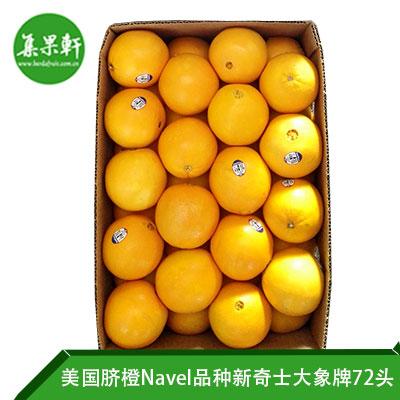 美国进口脐橙Navel品种 | Sincerity新奇士大象牌20公斤72头规格
