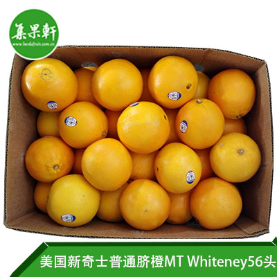 美国新奇士普通脐橙MT Whiteney56头