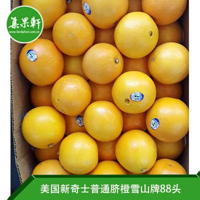美国进口脐橙Navel品种 | MT Whiteney新奇士雪山牌20公斤88头规格