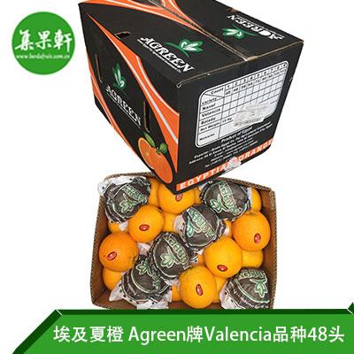 埃及进口夏橙Valencia品种 | Agreen牌15公斤48头规格