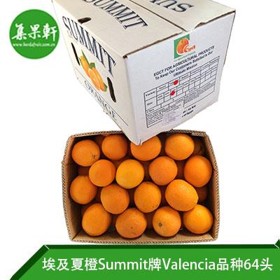 埃及进口夏橙Valencia品种 | Summit牌15公斤64头规格
