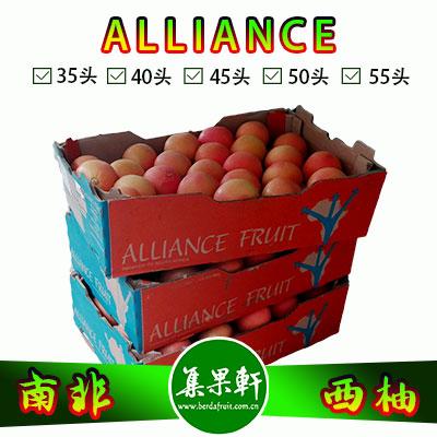 南非进口红宝石西柚Star Ruby品种 | ALLIANCE牌17公斤