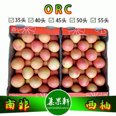 南非进口红宝石西柚Star Ruby品种 | ORC牌17公斤