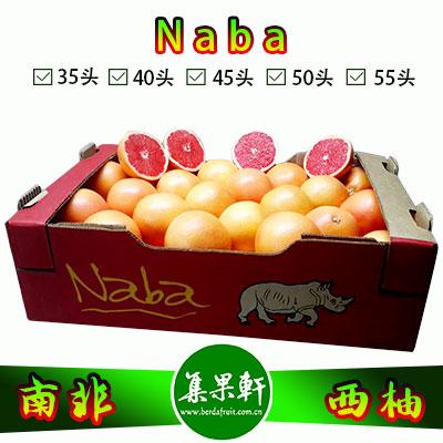 南非进口红宝石西柚Star Ruby品种 | Naba犀牛牌17公斤
