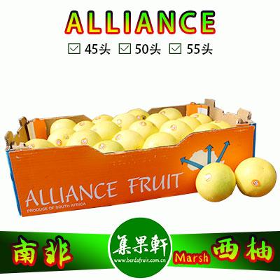 南非白肉西柚Marsh品种ALLIANCE品牌17公斤