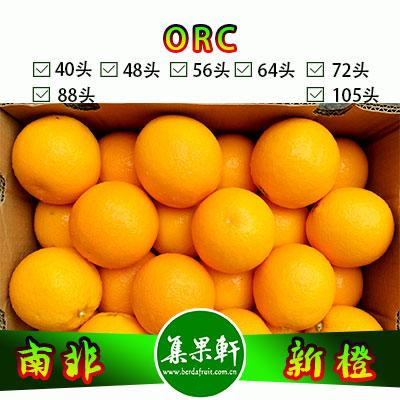 南非进口ORC牌品种Valencia新橙
